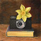 Yellow daffodil by Dasidaria Hardcastle
