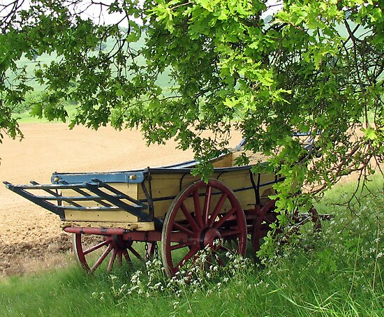 The Hay Rick, Hyde Hall, Essex by BlueMoonRose