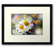 Daisy Glow Framed Print