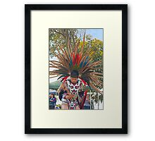 Fabulous Feathers! Framed Print