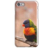 Pretty Birdie iPhone Case/Skin