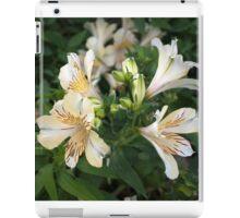 Longwood Gardens - Spring Series 1 iPad Case/Skin