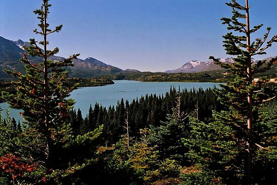 Tagish Lake (Yukon) by Juergen Weiss
