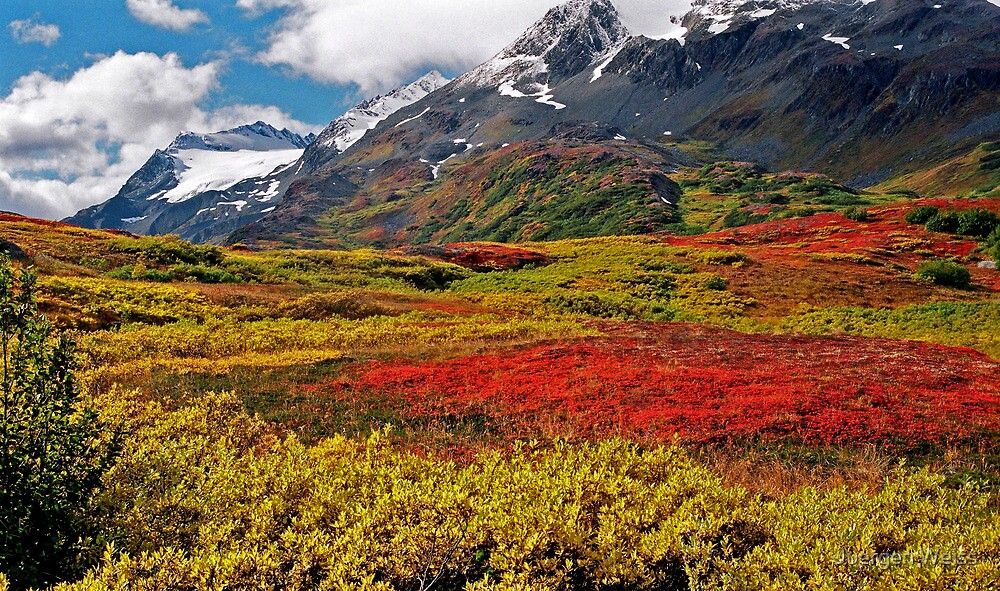 Colorful Land (Alaska) by Juergen Weiss