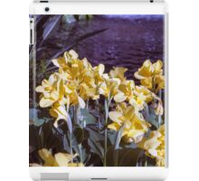 Longwood Gardens - Spring Series 3 iPad Case/Skin
