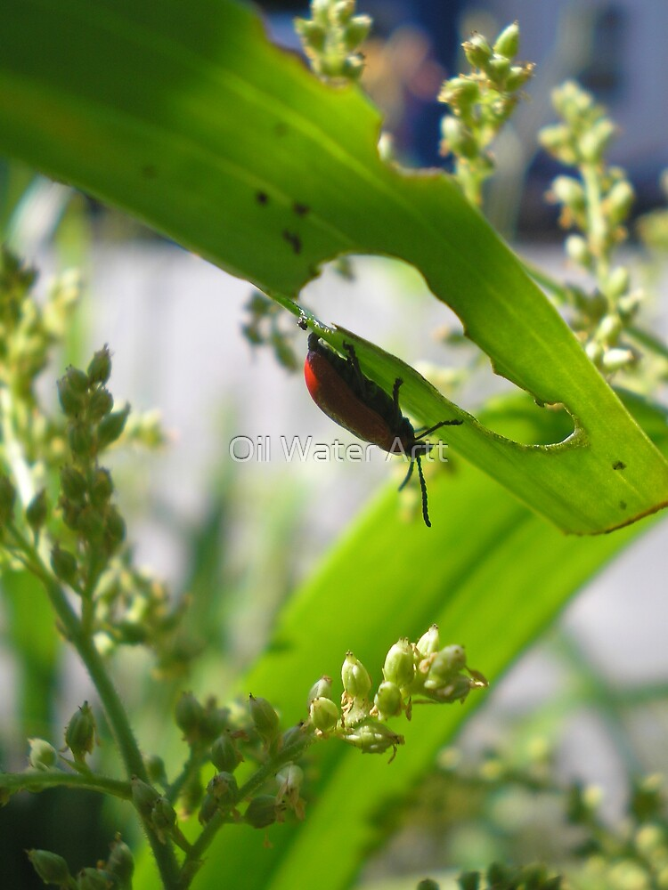 a bug's life 2 by Oil Water Artt
