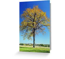 Autumn at Valley Forge, Pennsylvania Greeting Card