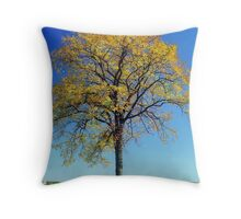 Autumn at Valley Forge, Pennsylvania Throw Pillow