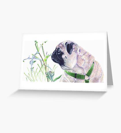 Pug & Nature - Colored Pencil Greeting Card