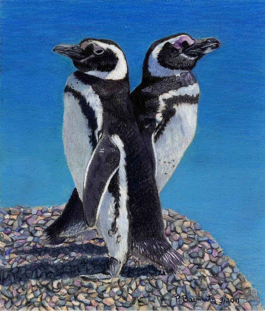 I'm Not Talking To You!  Penguins by Patricia Barmatz