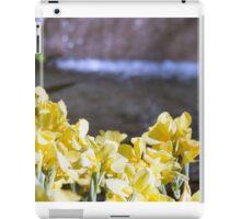Longwood Gardens - Spring Series 5 iPad Case/Skin