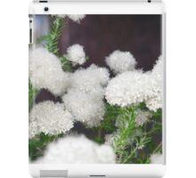 Longwood Gardens - Spring Series 6 iPad Case/Skin