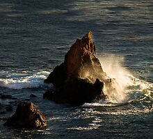 Ocean wave in the golden hour by Celeste Mookherjee