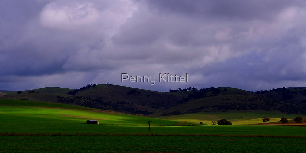 Acres of green by Penny Kittel