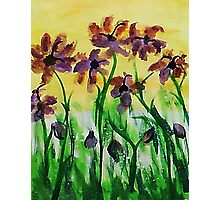 Flowers enjoy the sunny day, watercolor Photographic Print