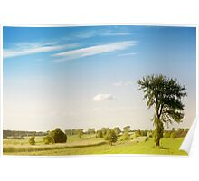 Rural grassland trees view Poster