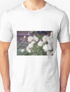 Longwood Gardens - Spring Series 7 T-Shirt