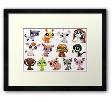 Lily's Little Pet Shop Collection Framed Print