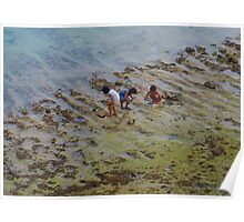 Kids paddling looking for little crabs Poster