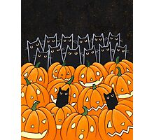 Black Cats & Jack-o-Lanterns Photographic Print