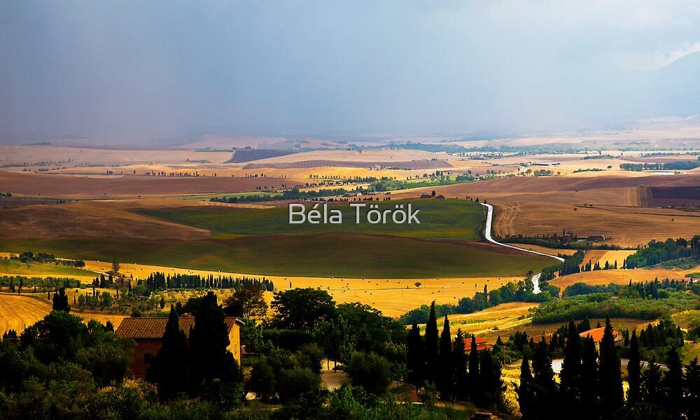 Rainy day in Tuscany by Béla Török