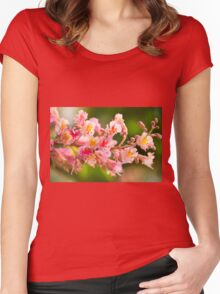 red chestnut tree blossoms Women's Fitted Scoop T-Shirt