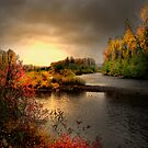 Glow On The Willamitte River by Charles &amp; Patricia   Harkins ~ Picture Oregon
