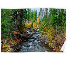 Jack Creek ~ Central Oregon ~ Poster