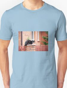lonely stray black cat  T-Shirt
