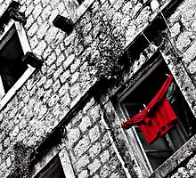 Red Laundry by Scott Anderson