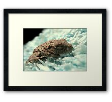 Even Frogs Like Soft Blankies Sometimes... Framed Print