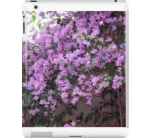 Longwood Gardens - Spring Series 15 iPad Case/Skin