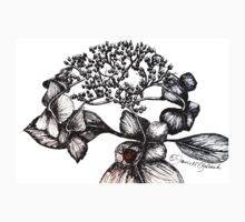 Hydrangea Lacecap with Ladybug T-Shirt
