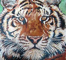 Tiger face by db artstudio by Deborah Boyle