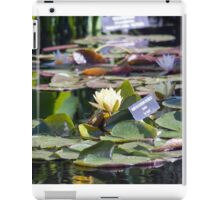 Longwood Gardens - Spring Series 16 iPad Case/Skin