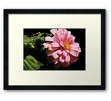 Ribbon Flower Framed Print