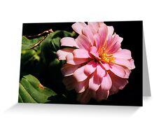 Ribbon Flower Greeting Card