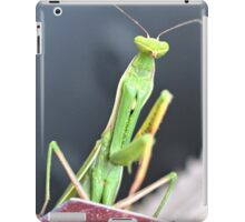 Praying Mantis Macro Photo iPad Case/Skin