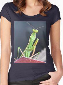 Praying Mantis Macro Photo Women's Fitted Scoop T-Shirt