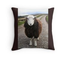 Middlesmoor Herdwick Throw Pillow