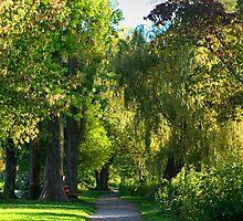 green way by plamenx