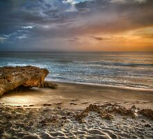 Sunrise and Coral by Noble Upchurch