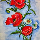 Watercolor Poppies by plunder