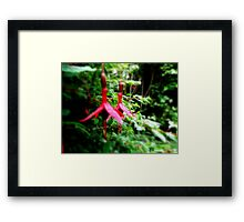 It take's two Framed Print