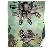 Octopus Float Poster