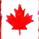 Canada Flag by Cameron Ohara
