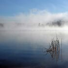 Algonquin Morning Mist by jackandpat