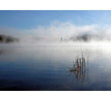 Algonquin Morning Mist Photographic Print