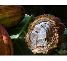 Inside the cocoa pod, Baracoa, Cuba Photographic Print