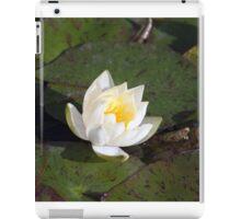 Longwood Gardens - Spring Series 25 iPad Case/Skin